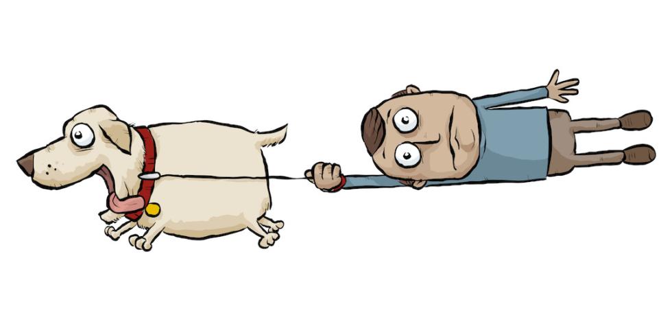 Cartoon Walking A Dog