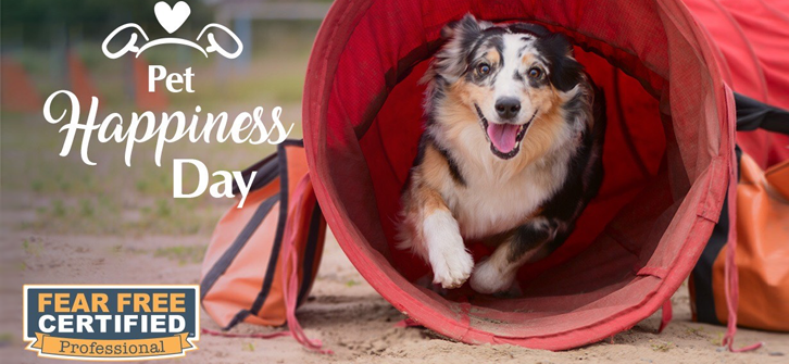 Pet Happiness Day March 16 2020
