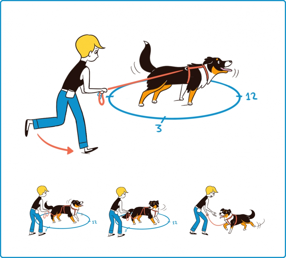 Round the Clock for Timely Leash Connection
